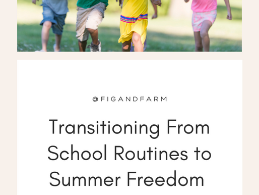 BONUS EPISODE: Transitioning From School Routines to Summer Freedom