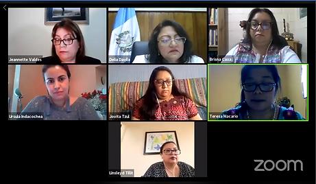 Guatemala webinar june 2020.png