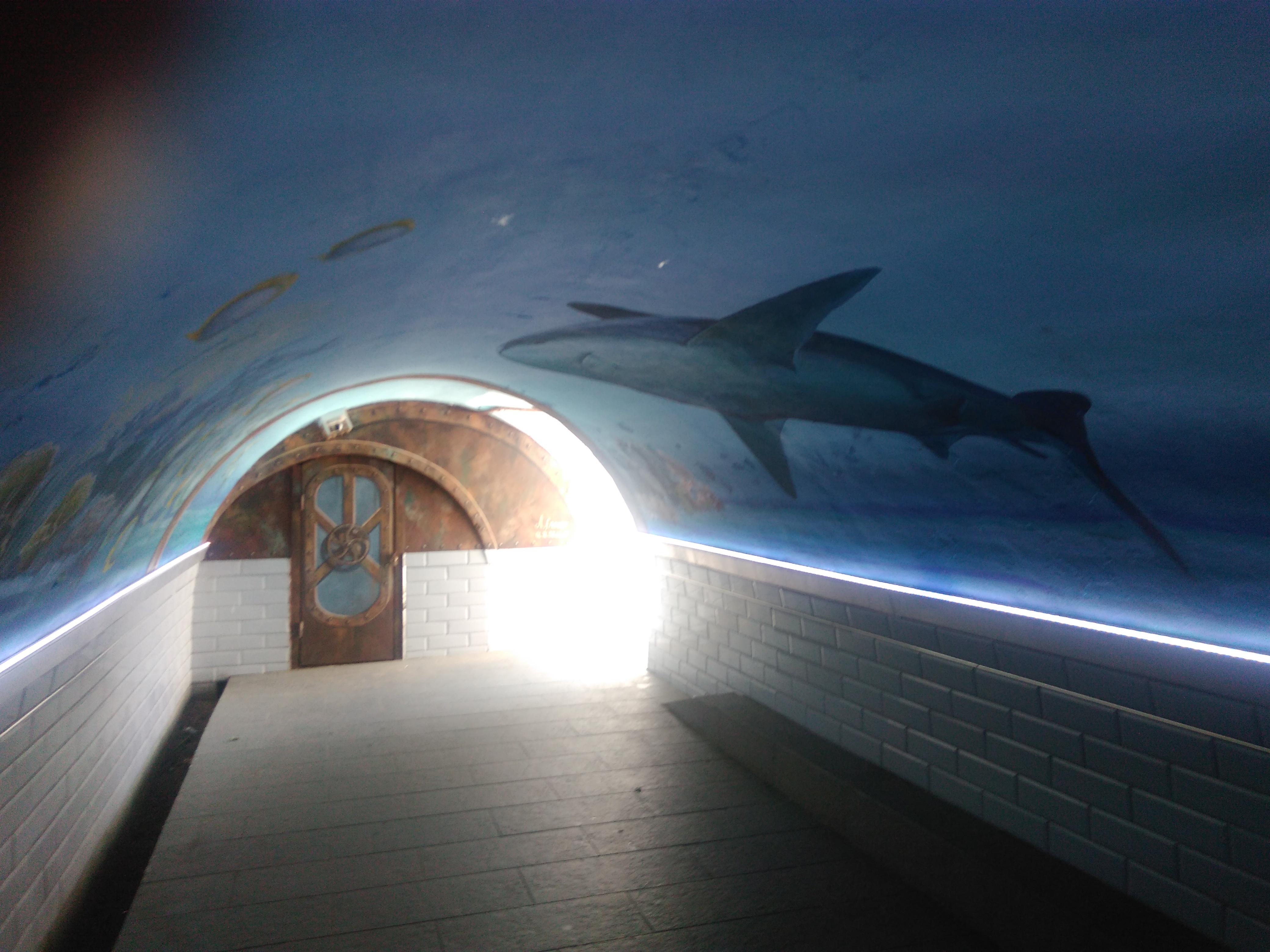 accès mer par mini tunnel
