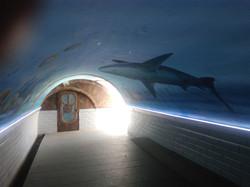 tunnel pietons accès plage