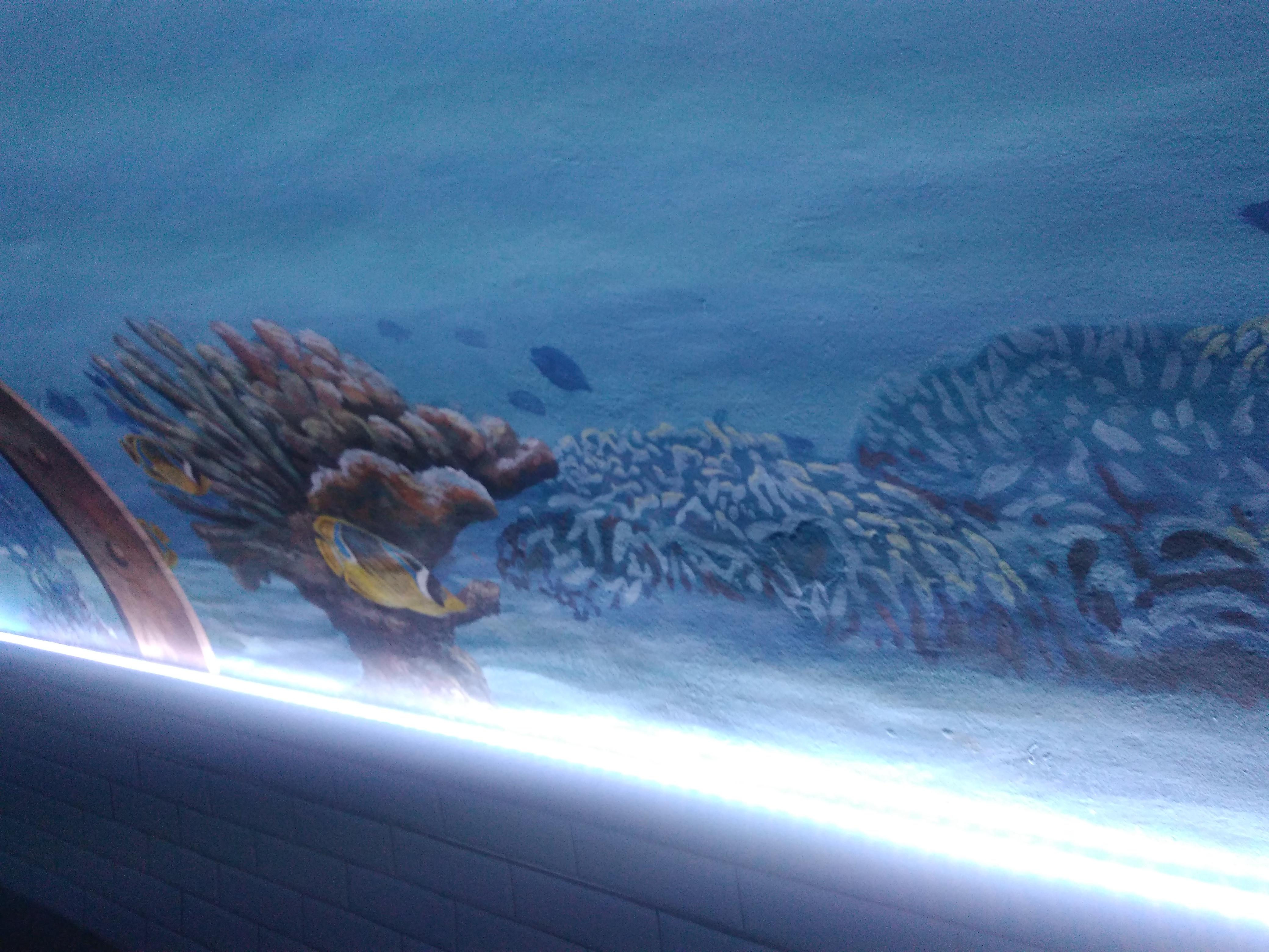 fresques 20000 lieux sous les mers