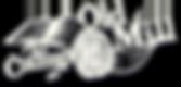caom-logo.png