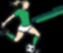 logo2020.2.png