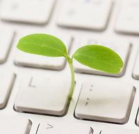 Contact Bootstrap Environmental Services