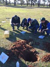 Visual soil assessments VSA