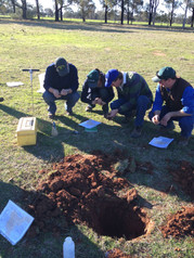 Visual soil assessments VSA