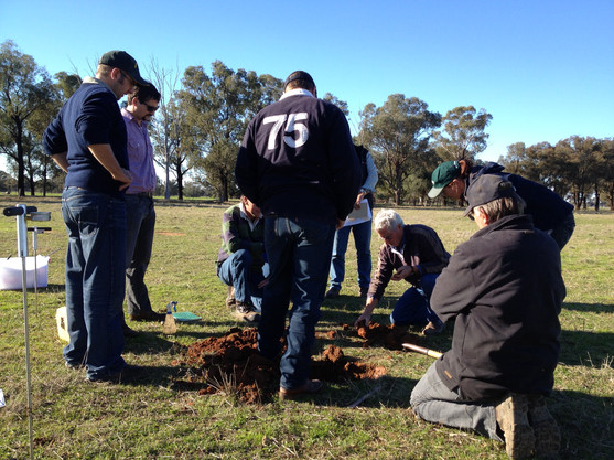 Visual soil assessment VSA