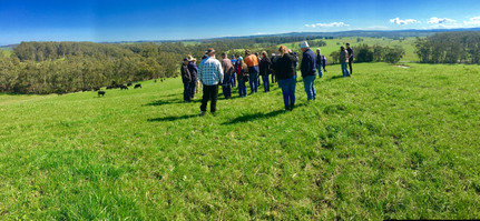 Farm demonstration day, West Gippsland VIC