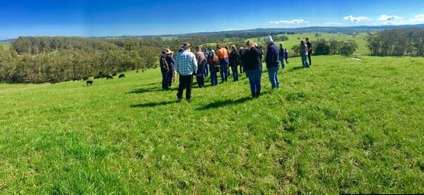 Farm demonstration day, West Gippsland VIC
