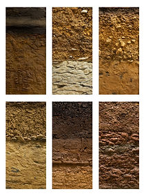 Different types of soil ground on a whit