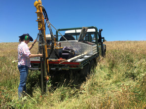 A great assistant in the field undertaking a carbon farming project in West Gippsland VIC