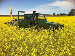 What an amazing paddock of canola!  Always mindful of vehicle traffic caused when soil sampling, in this case it was unavoidable