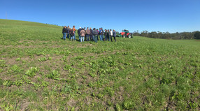 Farm demonstration in Hallora VIC