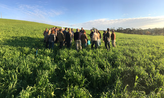 A farm walk is an excellent opportunity to talk healthy soils