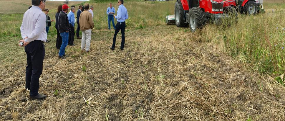 Bootstrap Environmental Services Soil Ca
