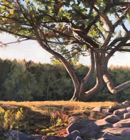 Apple Tree at Dusk