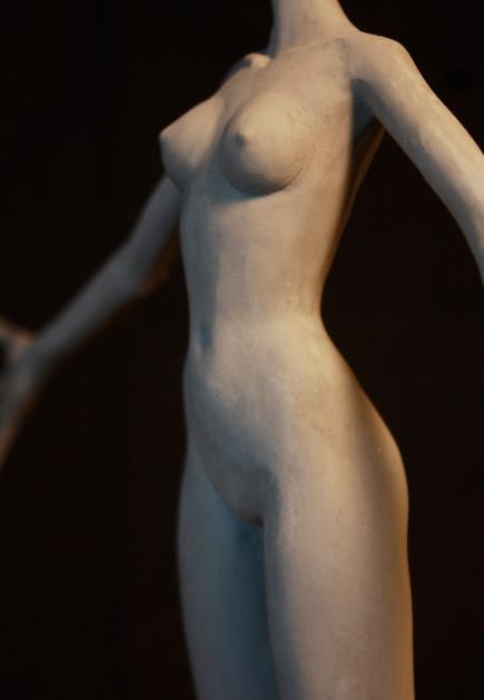 front torso.jpg