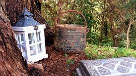 La Cabane Druidique d'Eline
