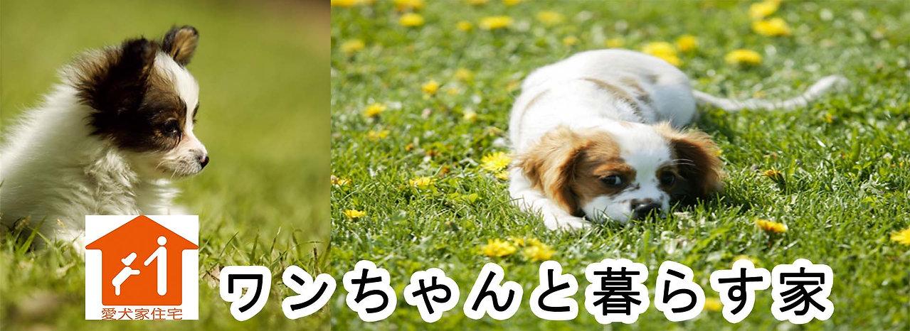 ワンちゃんHOUSE.jpg