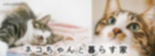 ネコちゃんHOUSE.jpg