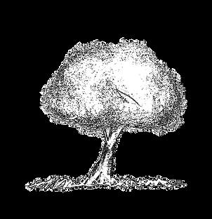 木 イラスト.png