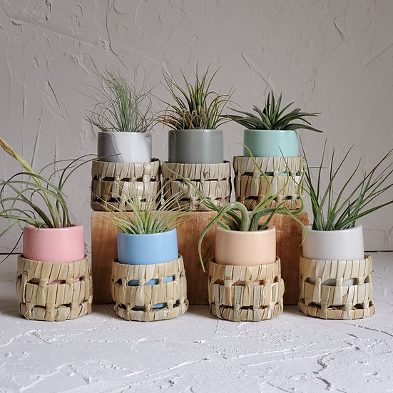 Small Ceramic Air Plant Pot