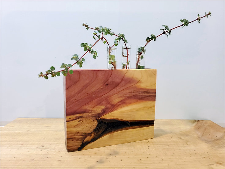Red Cedar Propagation Station, Bud Vase