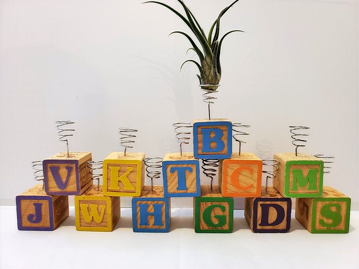 Vintage Alphabet Blocks Wire Single Air Plant Display with Air Plant