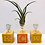 Thumbnail: Vintage Alphabet Blocks Wire Single Air Plant Display with Air Plant