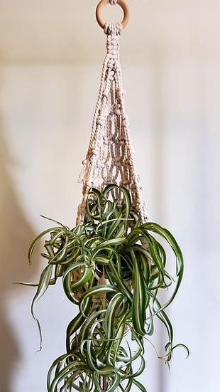 Large Macramé Plant Pot Hanger