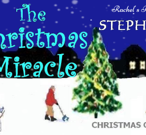 The Christmas Miracle by Stephanie Wood {Blog tour review}