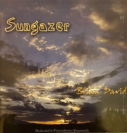 Sungazer cover.jpg