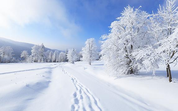 hintergrundbilder-winterlandschaft-308.p