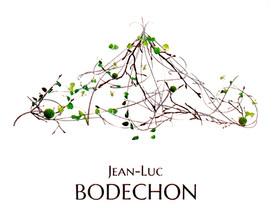 Bodechon.jpg