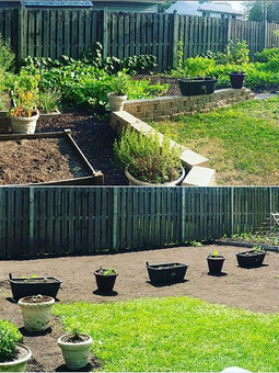The garden keeps growing