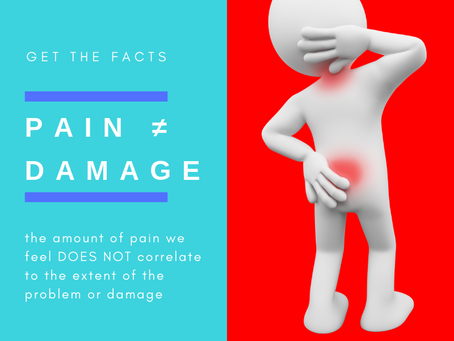 Pain  ≠ Damage