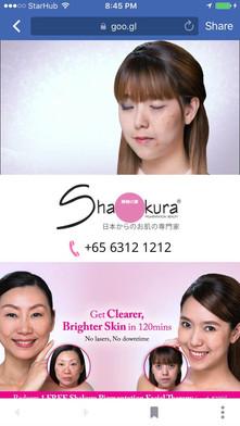 Advertisement3.JPG