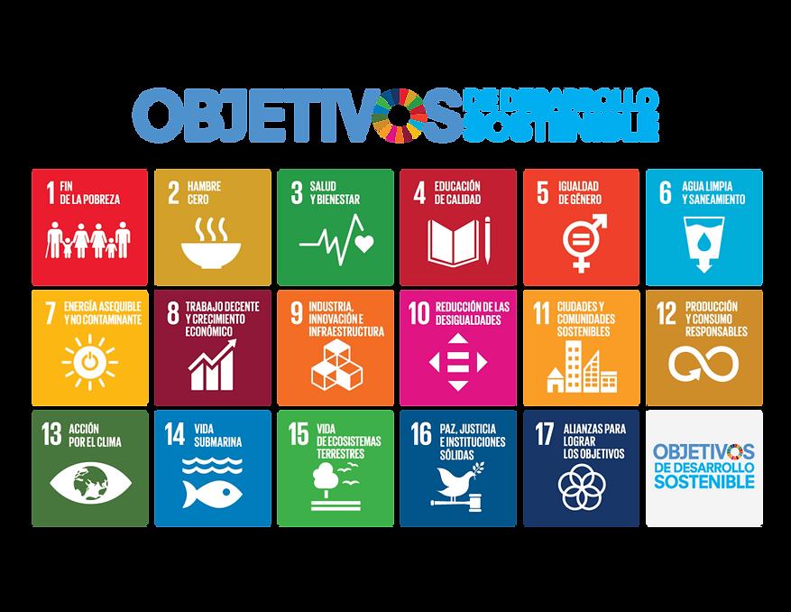 ODS (Sin logo ONU).png