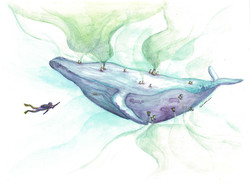 Saving Humpback Whale