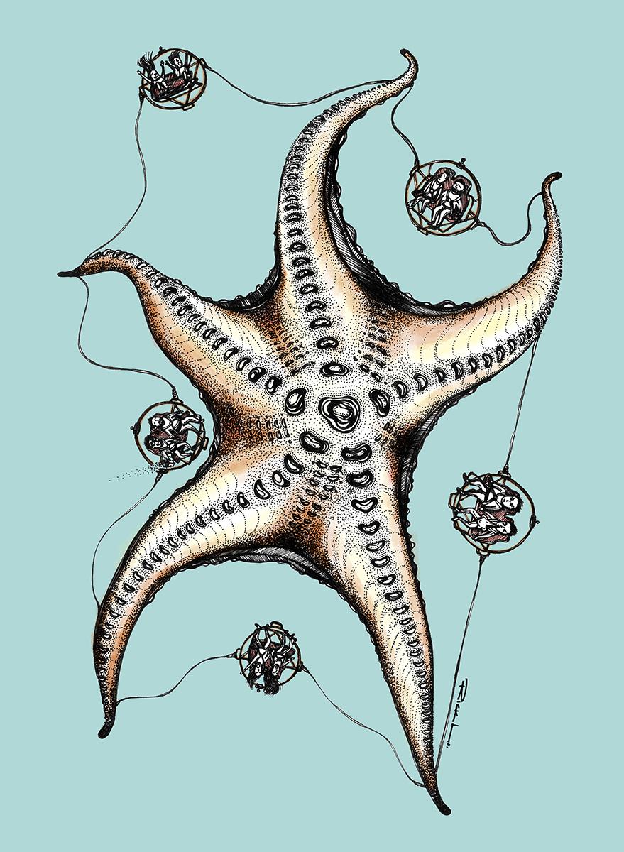 Zero Gravity of Starfish