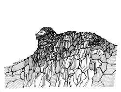 Lion Rock, Our Values
