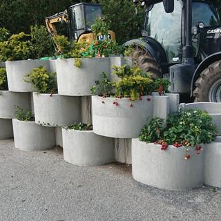 Kunne du tenke deg en vertikal hage full av jordbær?