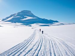 Gå på skitur i milevis av snø