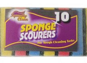 Squeaky Clean 10 Pack Sponge Scourer