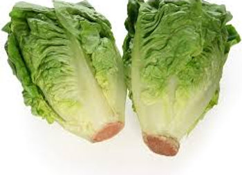 Gem Lettuce 2 Pack