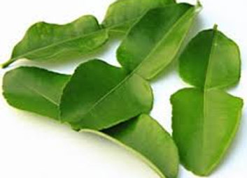 Fresh Kaffir Lime Leafs