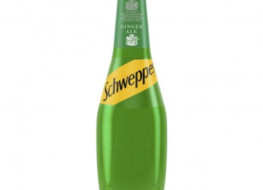 Schweppes Canada Dry Gingerale 1L