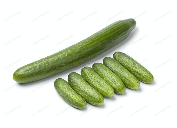 Baby Cucumbers 500gr