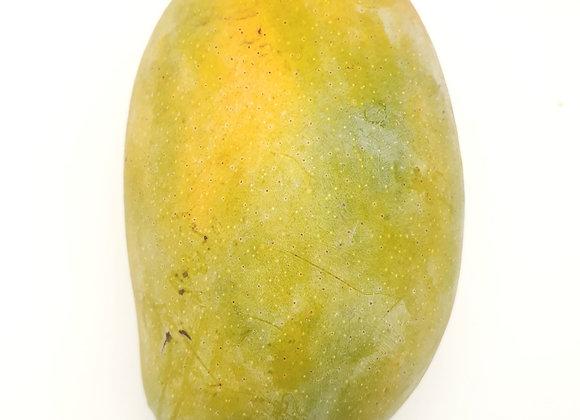 Pakistan Honey Mango