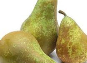 Conference Pear 1kg